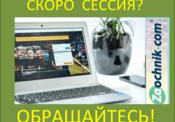 Онлайн помощь студентам заочникам